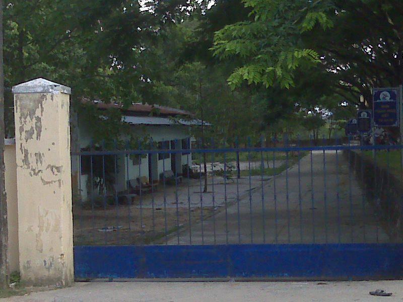 Áo thun lớp 10A1 – THPT Quang Trung – An Khê – Gia Lai